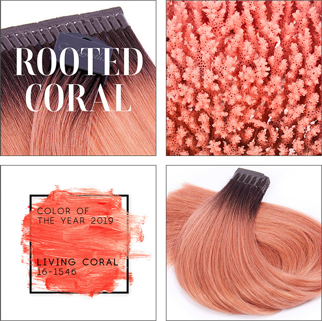 Farbe des Jahres 2019, jetzt als Rooted Coral! ⛵⛵
