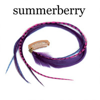 Quill Clips Grand . summerberry