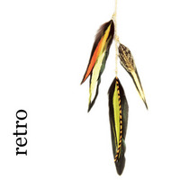 Feather Charms . retro