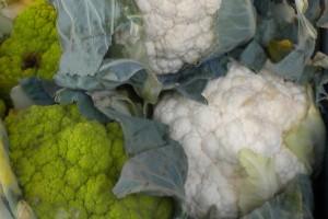 Gemüse - reich an Vitaminen un Ballaststoffen